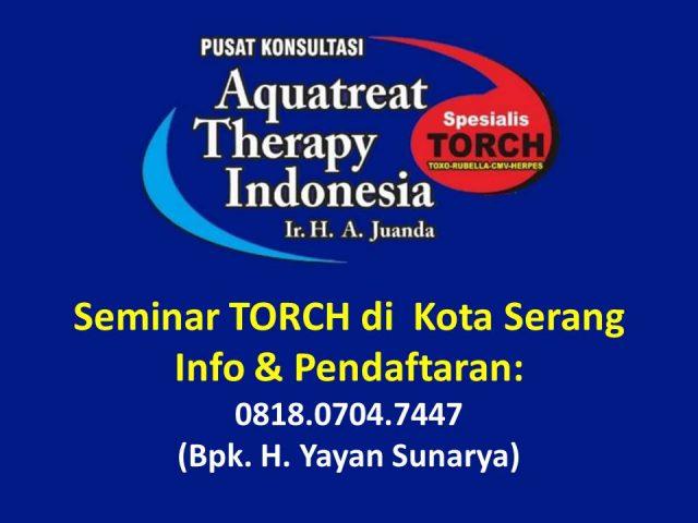 Seminar TORCH di Serang
